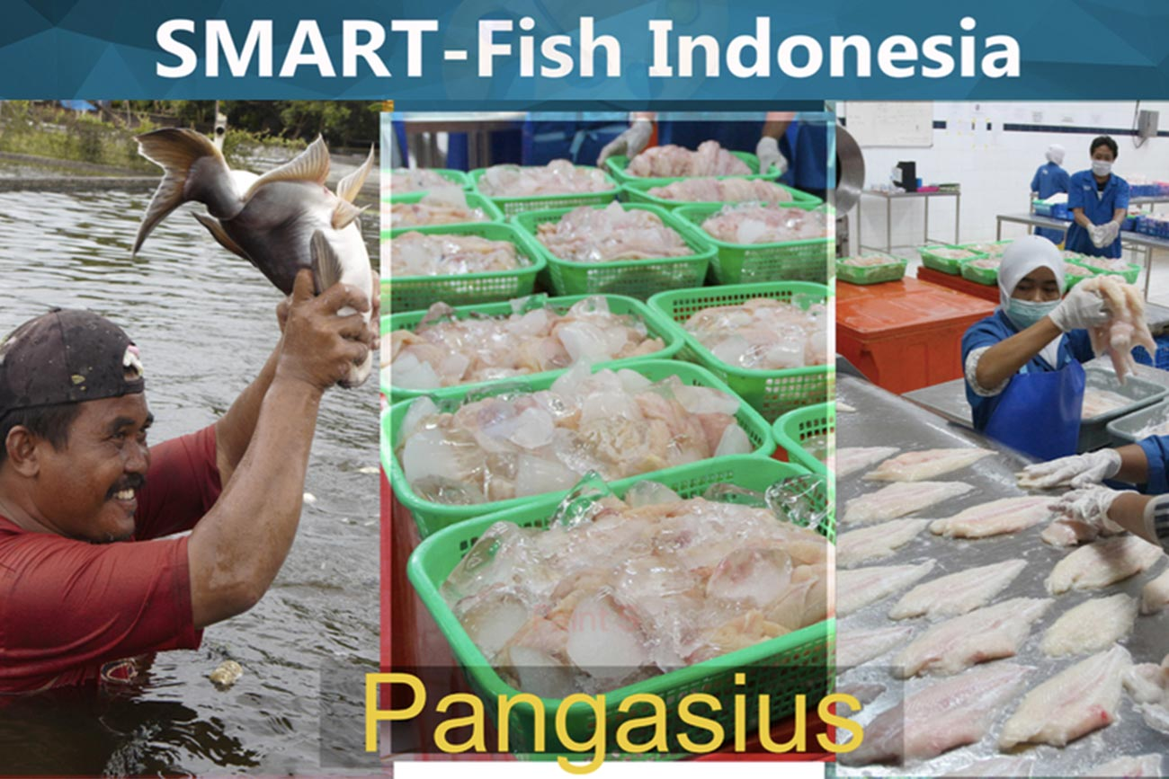 UNIDO's SMART-Fish Programme Enables First Export of Indonesian Pangasius