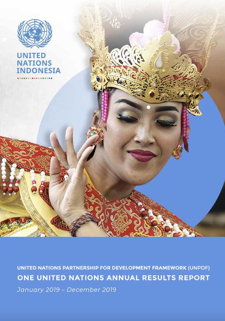 UNPDF Results Report 2019