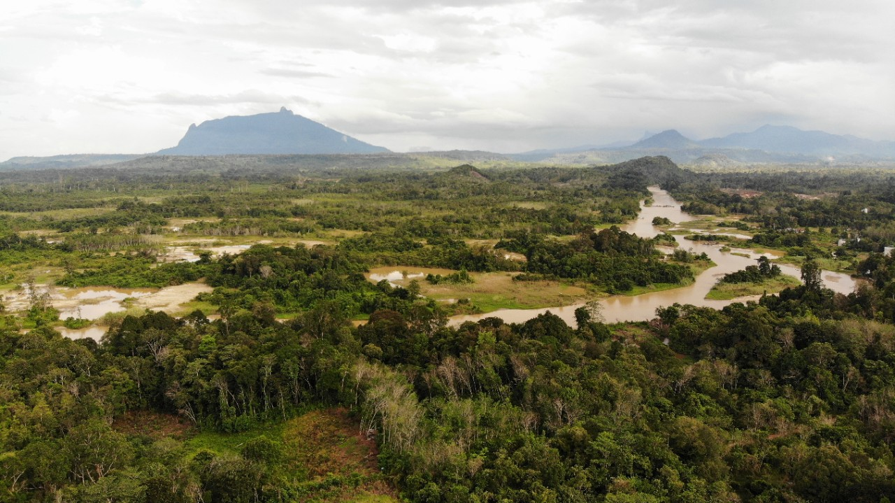 How a Farming Village Cooperative Safeguards Indonesia's Forests