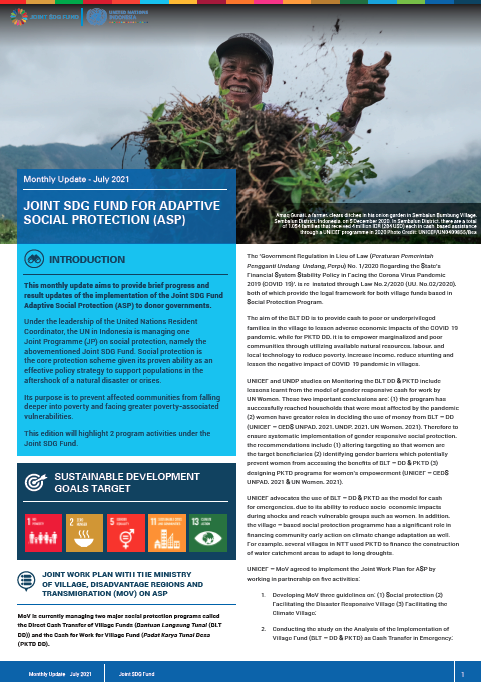 Newsletter Joint SDG Fund COVID-19 MPTF - July 2021